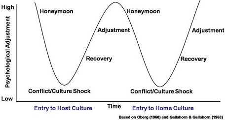 w-curve for culture shock